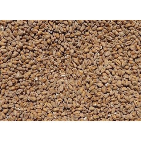 Pszeniczny (3-6 EBC) Strzegom - 5kg