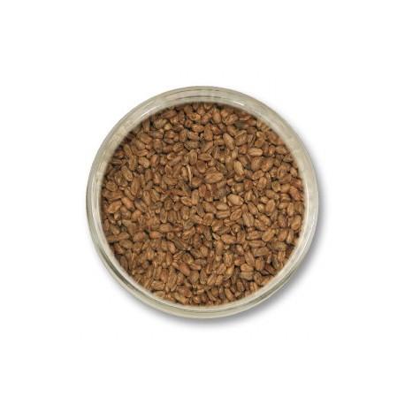 Pszeniczny karmelowy